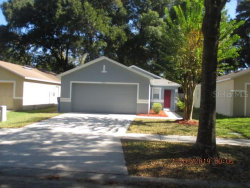 Photo of 11828 Mango Groves Boulevard, SEFFNER, FL 33584 (MLS # T3213459)