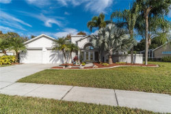 Photo of 21235 Marsh Hawk Drive, LAND O LAKES, FL 34638 (MLS # T3214645)