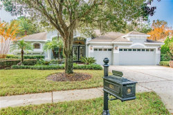 Photo of 6621 Thornton Palms Drive, TAMPA, FL 33647 (MLS # T3214690)