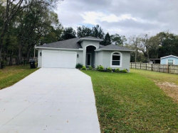 Photo of 15623 Willowdale Road, TAMPA, FL 33625 (MLS # T3215130)