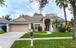 Photo of 6803 Regents Village Way, APOLLO BEACH, FL 33572 (MLS # T3216001)
