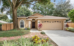 Photo of 415 Valencia Park Drive, SEFFNER, FL 33584 (MLS # T3217552)
