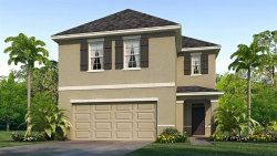 Photo of 16673 Secret Meadow Drive, ODESSA, FL 33556 (MLS # T3219598)