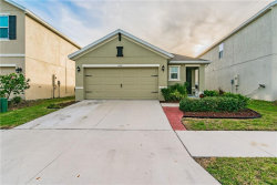 Photo of 10141 Geese Trail Circle, SUN CITY CENTER, FL 33573 (MLS # T3219635)