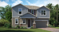 Tiny photo for 2208 Camden Park Avenue, DAVENPORT, FL 33837 (MLS # T3219879)