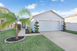 Photo of 11039 Golden Silence Drive, RIVERVIEW, FL 33579 (MLS # T3221647)
