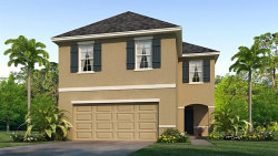 Photo of 16549 Secret Meadow Drive, ODESSA, FL 33556 (MLS # T3221885)