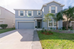 Photo of 10037 Crested Fringe Drive, RIVERVIEW, FL 33578 (MLS # T3221935)