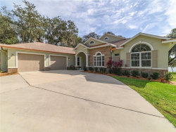 Photo of 9806 Detrop Street, RIVERVIEW, FL 33578 (MLS # T3222105)