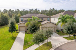 Photo of 12133 Streambed Drive, RIVERVIEW, FL 33579 (MLS # T3222149)
