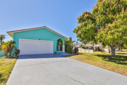 Photo of 1016 Spindle Palm Way, APOLLO BEACH, FL 33572 (MLS # T3224330)