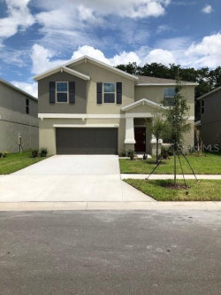 Photo of 10508 Fairy Moss Lane, RIVERVIEW, FL 33578 (MLS # T3225780)