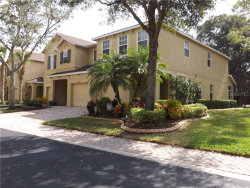 Photo of 10535 Shady Falls Court, RIVERVIEW, FL 33578 (MLS # T3225849)