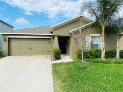 Photo of 203 Archcliffe Point Place, DOVER, FL 33527 (MLS # T3226259)