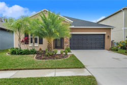 Photo of 19154 Alexandrea Lee Court, LAND O LAKES, FL 34638 (MLS # T3226361)
