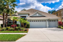 Photo of 3503 Diamond Falls Circle, LAND O LAKES, FL 34638 (MLS # T3226534)