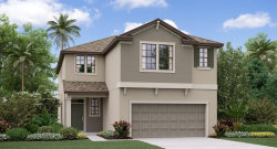 Photo of 8960 Flourish Drive, LAND O LAKES, FL 34637 (MLS # T3226901)