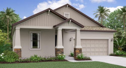 Photo of 9197 Shadyside Lane, LAND O LAKES, FL 34637 (MLS # T3226910)