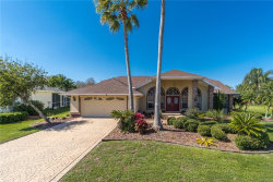 Photo of 21200 Preservation Drive, LAND O LAKES, FL 34638 (MLS # T3227164)