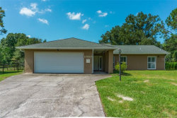 Photo of 17017 Wintergreen Court, LUTZ, FL 33558 (MLS # T3227704)