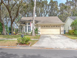 Photo of 2611 Wrencrest Circle, VALRICO, FL 33596 (MLS # T3229100)