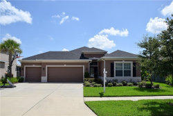 Photo of 11316 Coventry Grove Circle, LITHIA, FL 33547 (MLS # T3230201)