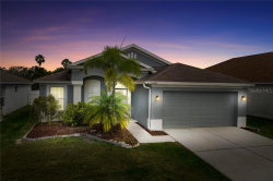 Photo of 12418 Midpointe Drive, RIVERVIEW, FL 33578 (MLS # T3231529)