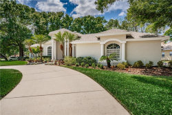Photo of 713 Fayette Place, LUTZ, FL 33549 (MLS # T3232456)