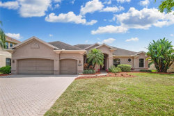 Photo of 12512 Eagles Entry Drive, ODESSA, FL 33556 (MLS # T3232461)