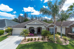 Photo of 7538 Whispering Wind Drive, LAND O LAKES, FL 34637 (MLS # T3232476)