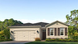 Photo of 8059 Wheat Stone Drive, ZEPHYRHILLS, FL 33540 (MLS # T3233037)