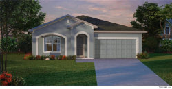 Photo of 13291 Serene Valley Drive, CLERMONT, FL 34711 (MLS # T3233536)