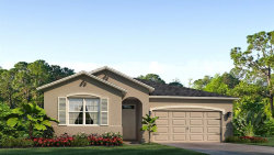 Photo of 12751 Eastpointe Drive, DADE CITY, FL 33525 (MLS # T3233585)