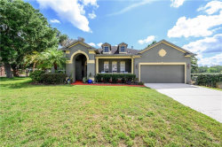 Photo of 501 Crowned Eagle Court, VALRICO, FL 33594 (MLS # T3233871)