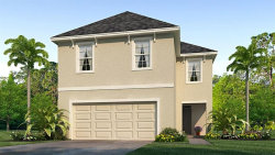 Photo of 8216 Pelican Reed Circle, WESLEY CHAPEL, FL 33545 (MLS # T3233987)