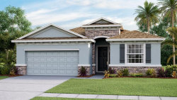 Photo of 8955 Bower Bass Circle, WESLEY CHAPEL, FL 33545 (MLS # T3233996)