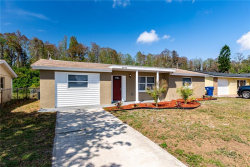 Photo of 3349 Maitland Drive, HOLIDAY, FL 34691 (MLS # T3234032)