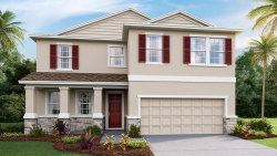 Photo of 8971 Bower Bass Circle, WESLEY CHAPEL, FL 33545 (MLS # T3234038)