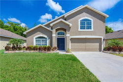 Photo of 11933 Palm Bay Court, NEW PORT RICHEY, FL 34654 (MLS # T3234117)