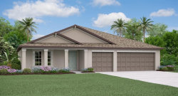 Photo of 13578 Willow Bluestar Loop, RIVERVIEW, FL 33579 (MLS # T3234544)