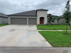 Photo of 13579 Willow Bluestar Loop, RIVERVIEW, FL 33579 (MLS # T3234548)