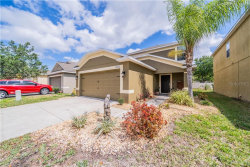 Photo of 15518 Telford Spring Drive, RUSKIN, FL 33573 (MLS # T3234760)