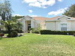 Photo of 13205 Waterford Run Drive, RIVERVIEW, FL 33569 (MLS # T3234810)