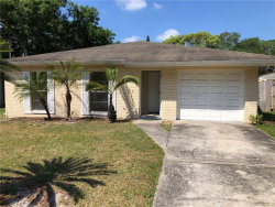 Photo of 9610 N Connechusett Road, TAMPA, FL 33617 (MLS # T3235057)