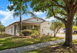Photo of 7640 Blue Spring Drive, LAND O LAKES, FL 34637 (MLS # T3235435)