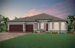 Photo of 4777 Archboard Place, LAND O LAKES, FL 34638 (MLS # T3235929)