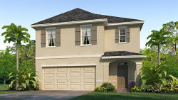 Photo of 9124 Water Chestnut Drive, TEMPLE TERRACE, FL 33637 (MLS # T3236001)