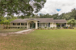 Photo of 14639 Sydney Road, DOVER, FL 33527 (MLS # T3241203)