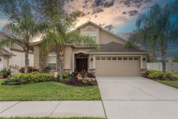 Photo of 10913 Rockledge View Drive, RIVERVIEW, FL 33579 (MLS # T3242741)