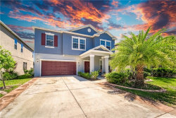 Photo of 11057 Little Blue Heron Drive, RIVERVIEW, FL 33579 (MLS # T3243526)